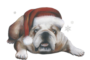 Today's Art Print: English bulldog at Christmas'
