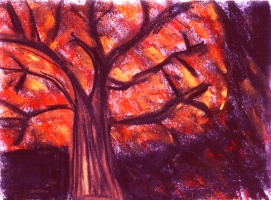 Today's Art Print: Tree Fire'