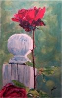 Today's Art Print: White Post and Red Rose'