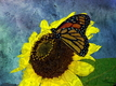 Title: Butterfly and Sunflower Digital Art