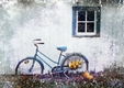 Title: Autumn Bicycle